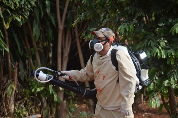 Maior isolamento ajudou a conter a dengue em Motuca, avalia Vigilância