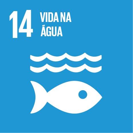 ODS busca o uso sustentável dos recursos marinhos