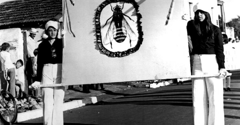 Há 31 anos, Motuca tornava-se município