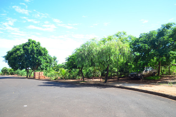 Área verde do Jardim Bela Vista