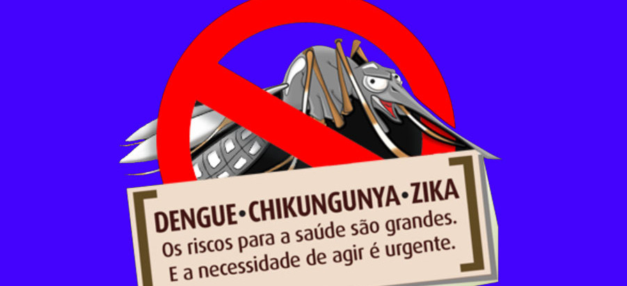 A luta permanente contra o mosquito que mata