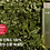 Thumbnail: HANYUL Artemisia Miracle Relief Essence 150ml
