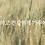 Thumbnail: 9Wishes Rice Water Sheet Mask 2BOX (22EA)