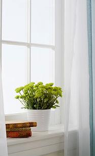 白い窓を解放