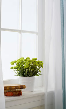 a plant pot in front of a window