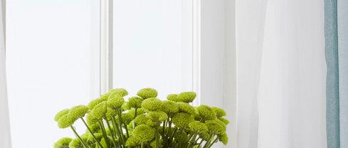 Green Home: 30 min Phone Consultation