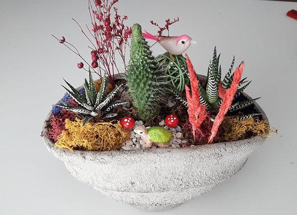 kaktus tasarım 4