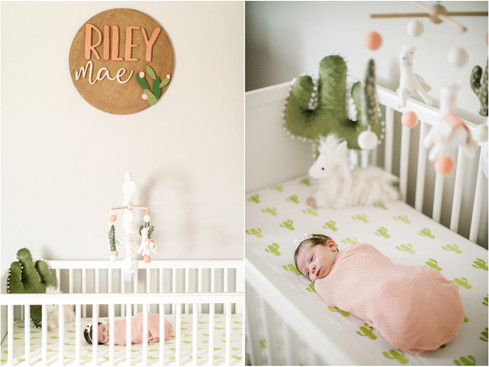 022RS_newborn_session_llamas_nursery_decor_baby_photos_arizona_jennifer_bowen.jpg
