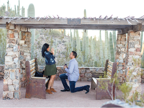 Surprise Proposal at Desert Botanical Garden