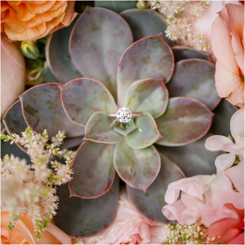 David & Jenne's Wedding at Four Seasons Scottsdale
