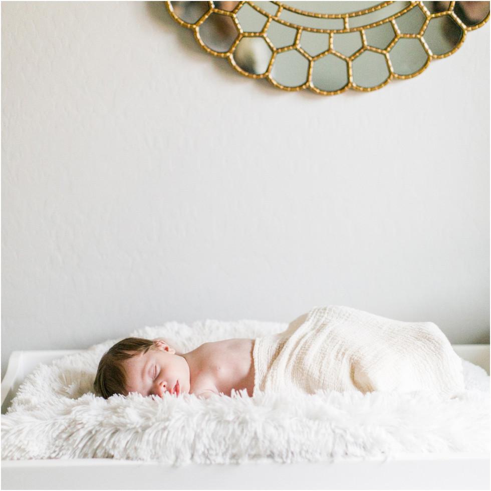 020RS_newborn_session_llamas_nursery_dec