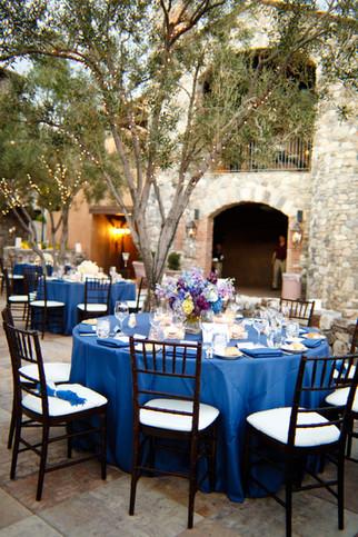 Chiracahua Wedding Reception AZ