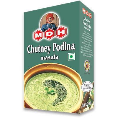 MDH PODINA CHUTNEY MASALA 100 GM