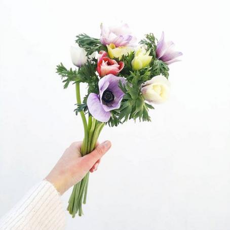 Des fleurs OK mais pas d'ailleurs 💐