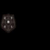 Coaching to Change Lives Logo Shield3.pn