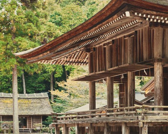JAPAN 2011_1057.jpg