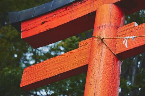 JAPAN 2011_0550.jpg