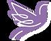 soar-logo-inverted_edited.png