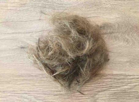 Détoxifier le cheveu...