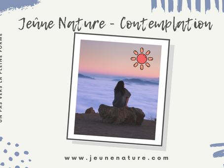 Un temps pour Contemplation chez Jeûne Nature