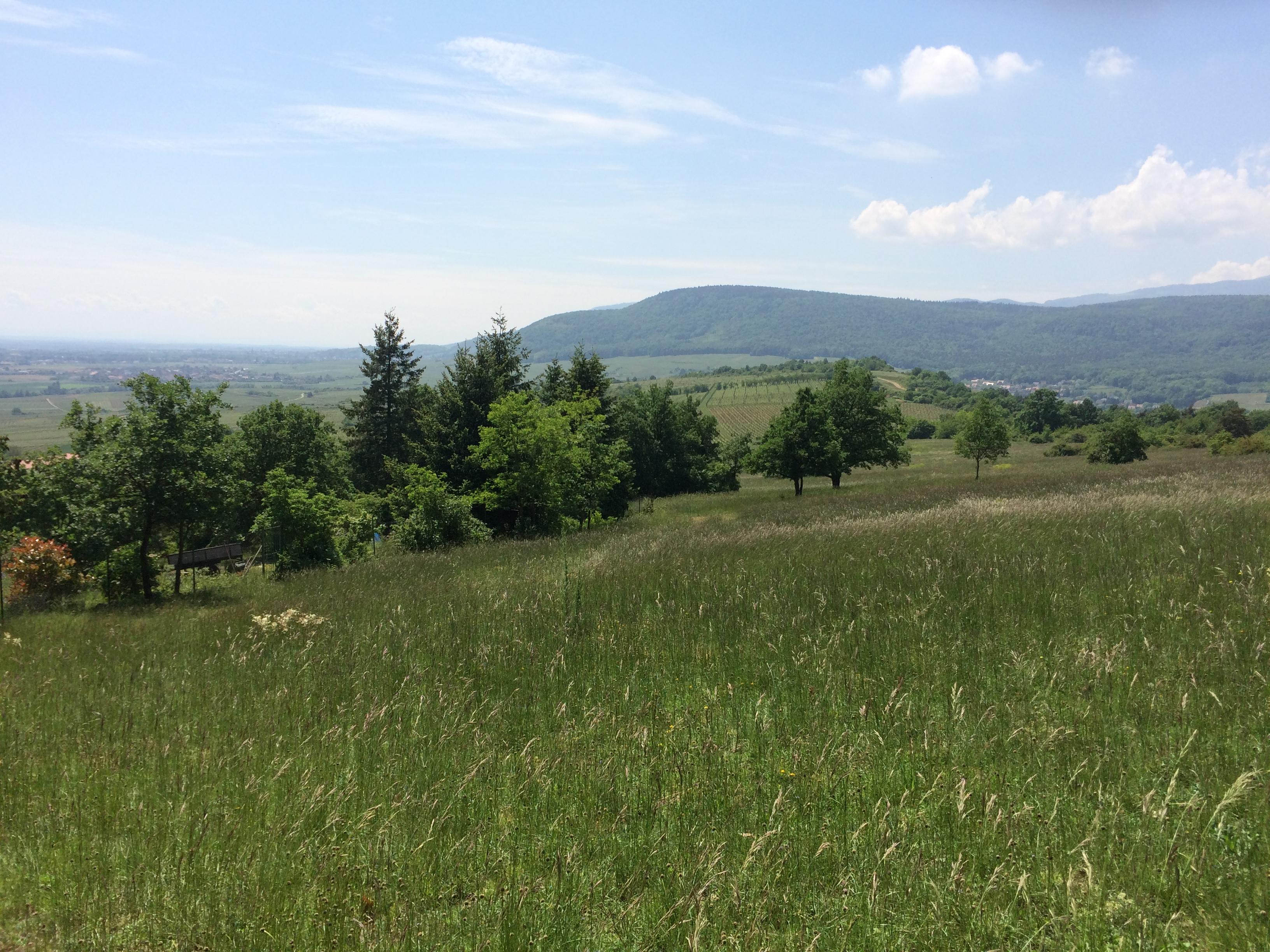 Vue sur Schimberg