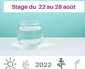 Jeûne Nature, Alsace, Vosges, Stage N°8 Août 2022 .png