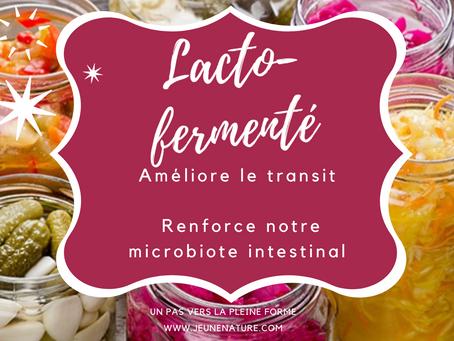 Lacto fermenté pour le microbiote