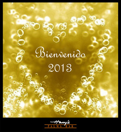 HARRYS NEW YEAR
