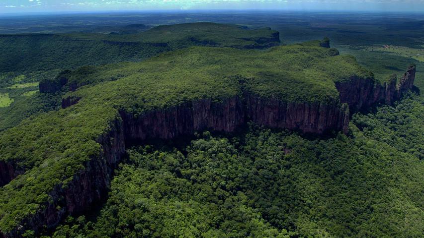 Pantanal Brasile ©Fabiano Accorsi