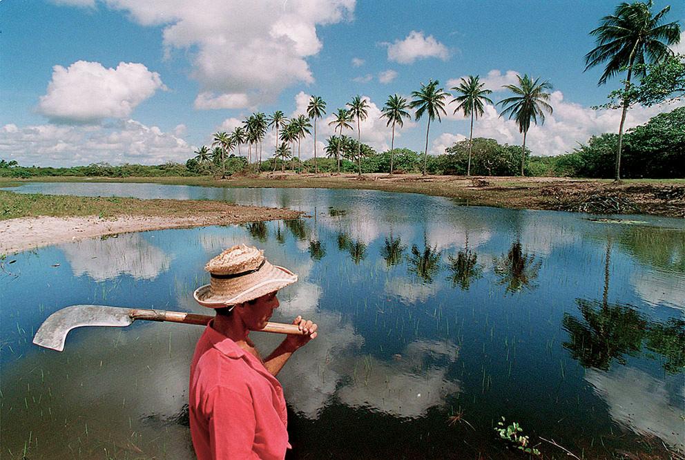 Ceará Brasile ©Fabiano Accorsi