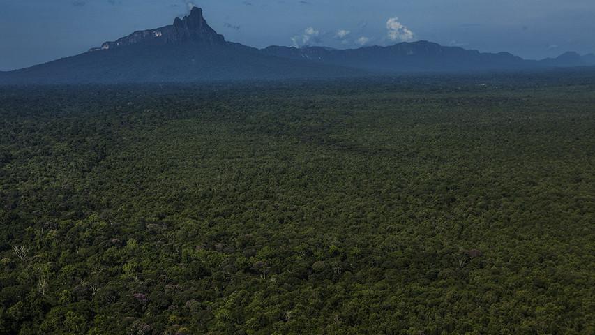 Amazzonia Brasile © Fabiano Accorsi