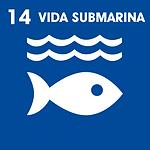 vida submarina.png