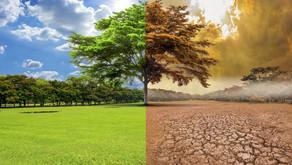 LA LEY DE CAMBIO CLIMÁTICO