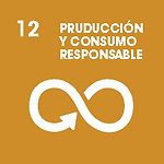 PRODUCCION Y CONSUMO RESPONSABLE.png