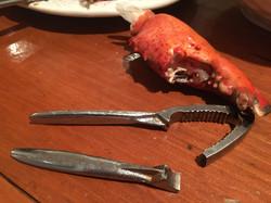 Tough Lobster