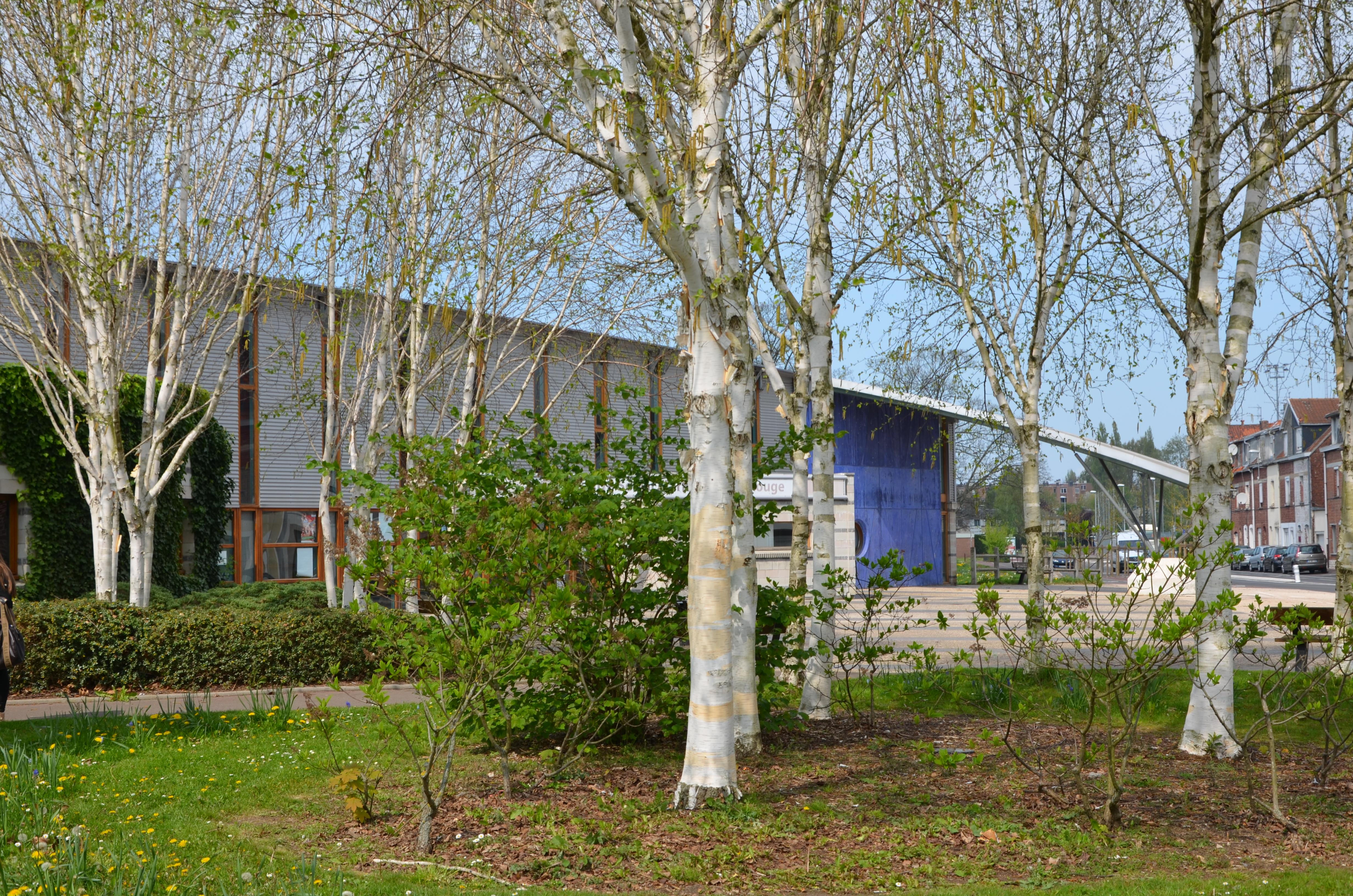 centre socio-culturel de la Marlière