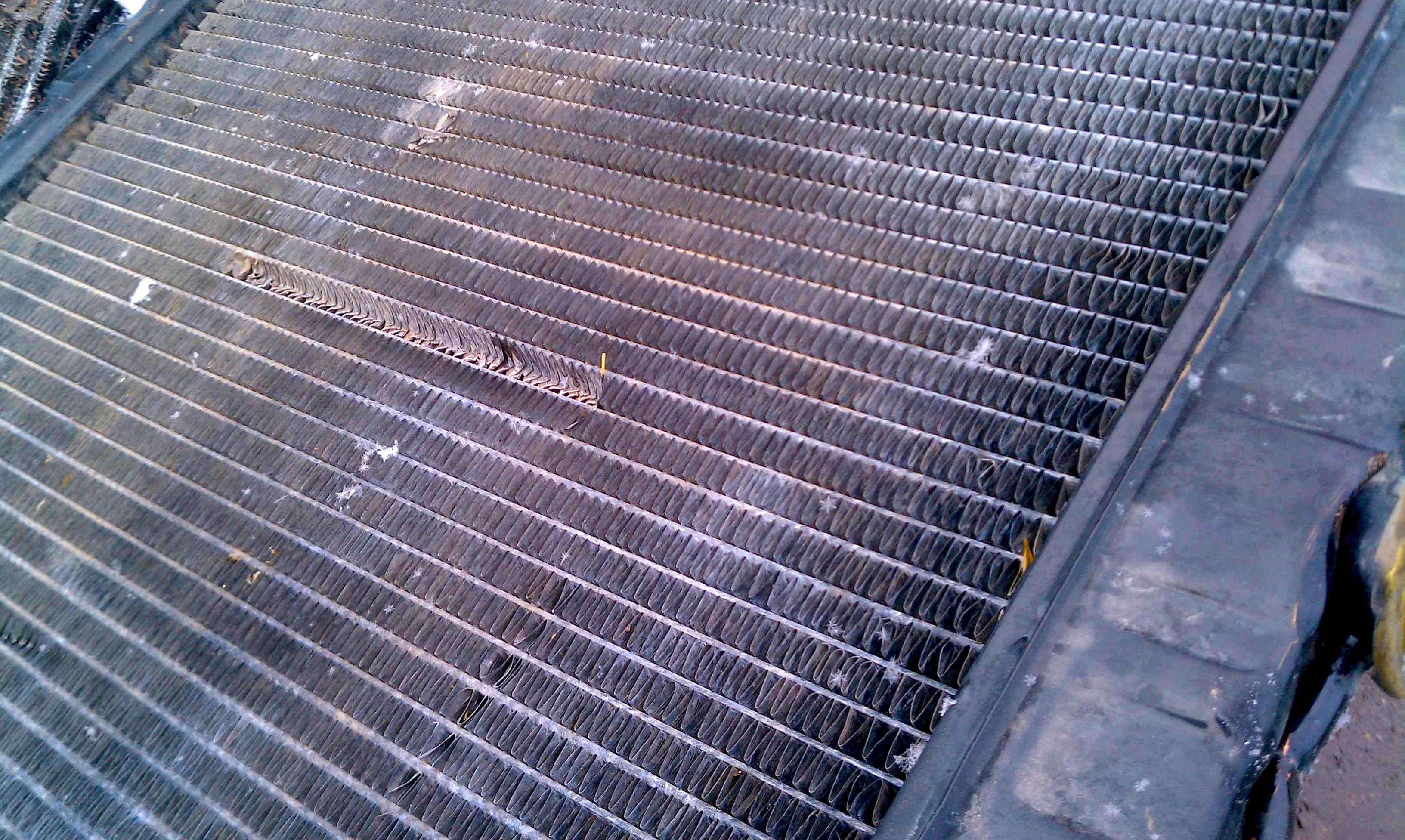 Radiators / Dirty