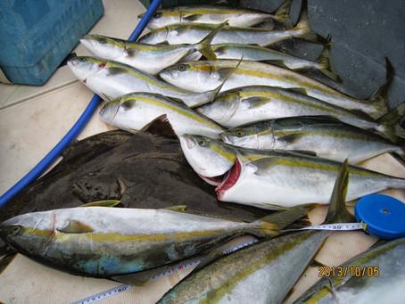2週連続大漁