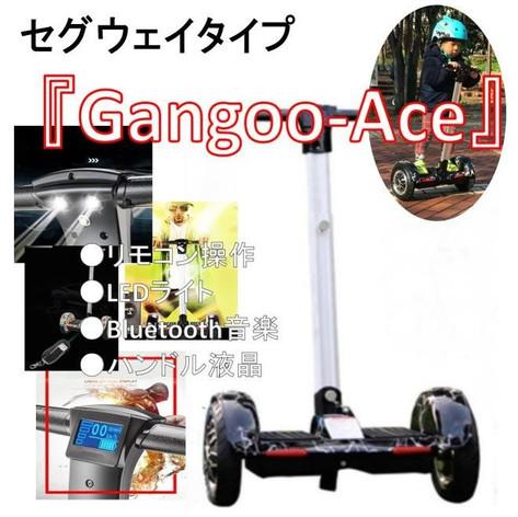 Gangoo-Ace