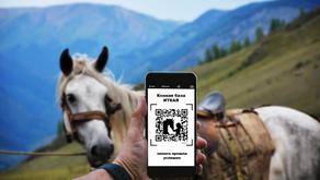 Теперь вы можете оплатить конную прогулку картой или по QR коду