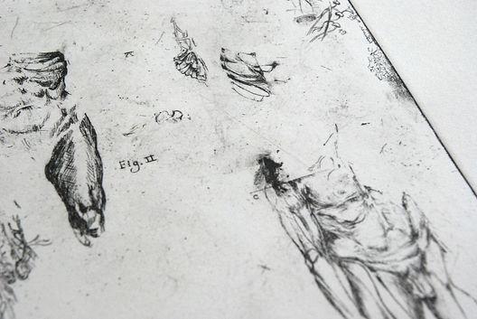 Gravure anatomie lea falguere