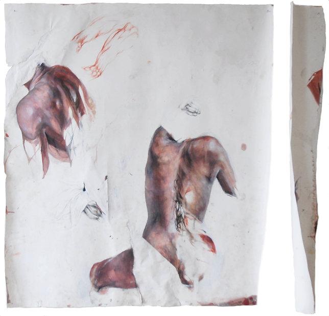 dessin en état de coupe anatomie léa falguère