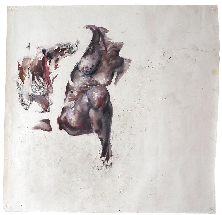 anatomie du dessin lea falguere corps ouvrir les figures