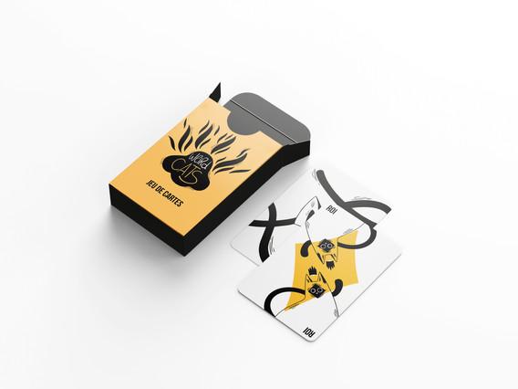 paquet 2 cartes.jpg