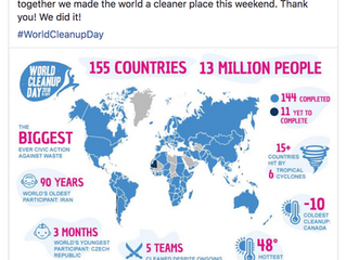 One Day, One Planet, One Goal  - World Cleanup Day