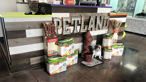 Petland enterence counter.jpg