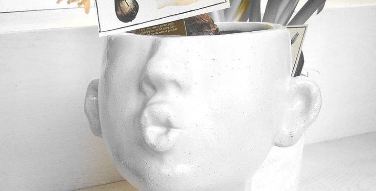 Kiss-me Medium