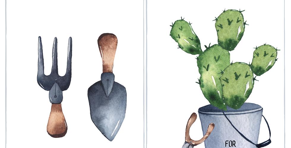 Biglietto Cactus