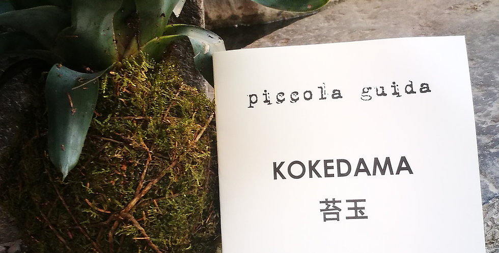Piccola Guida sul Kokedama