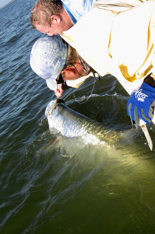 October Tarpon and Bull Redfish: Myrtle Beach, Georgetown, Pawleys Island, Debordieu and  Litchfield